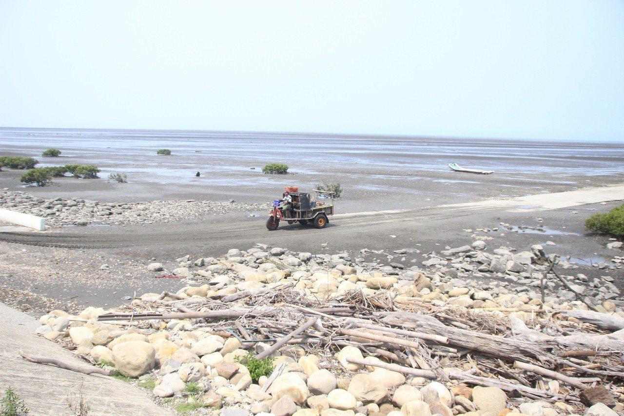 彰化漢寶濕地生態資源豐富。記者林敬家/攝影