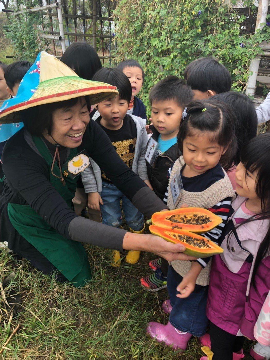 活動讓參與者體會「文化即生活、生活離不開環境、離不開食物」的概念。 基金會/提供