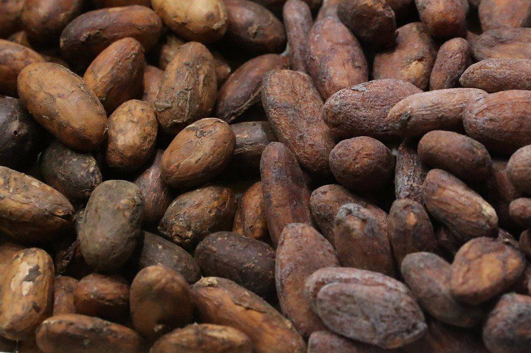 亞洲可可協會的數據顯示,亞洲今年第1季處理可可豆的數量比去年同期大增近10%。路...
