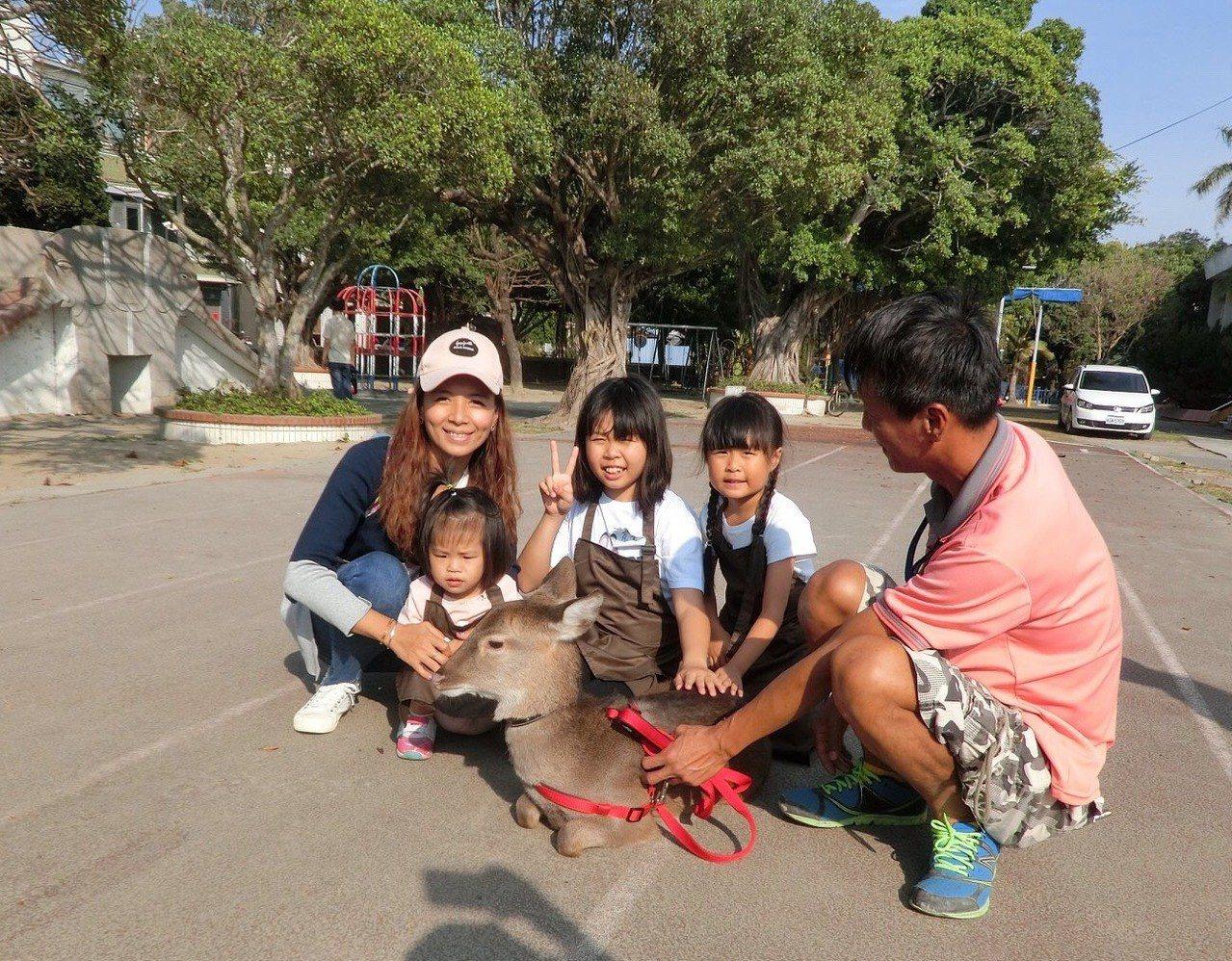 打造如日本奈良公園,台南佳里漳社區小鹿是社區小旅行最受遊客歡迎的。圖/漳洲社區提...