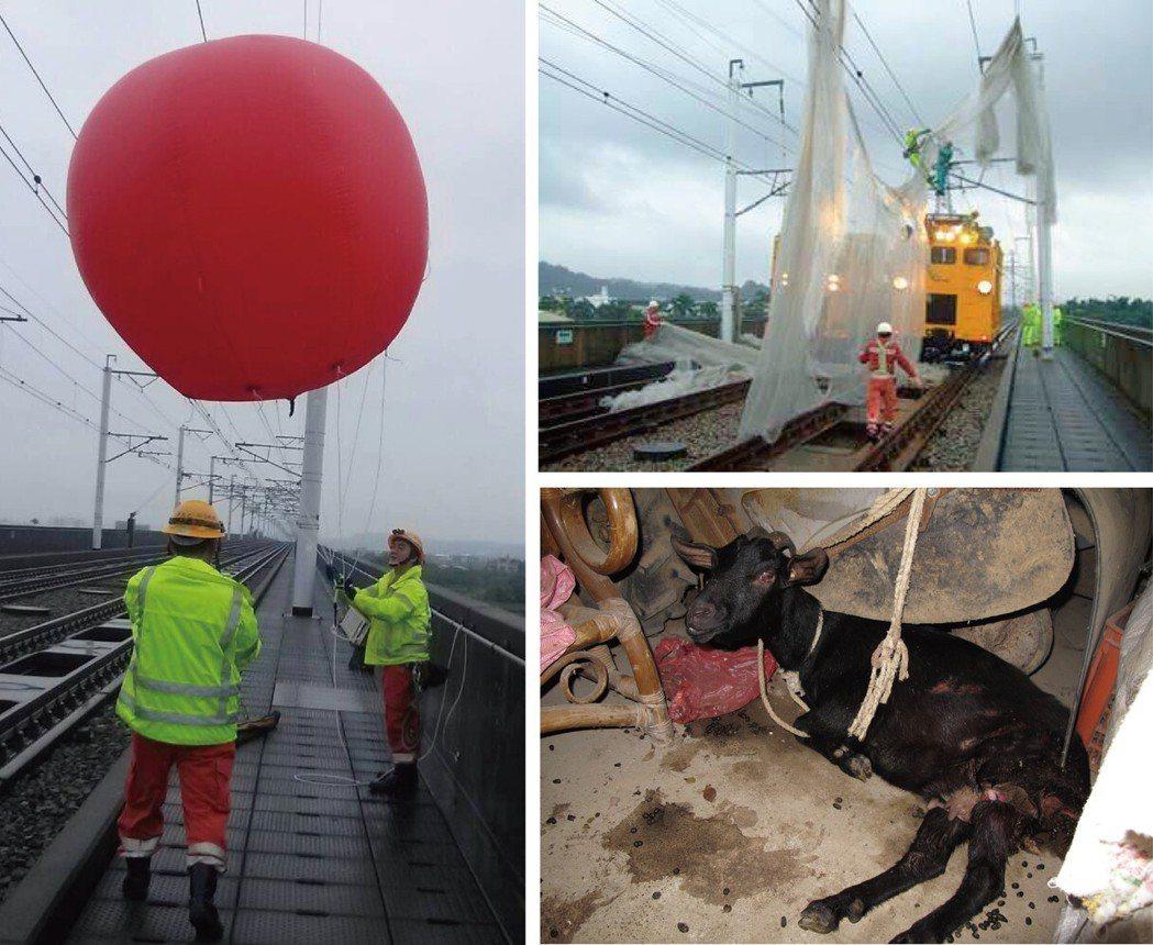 高鐵曾被氣球、菜網「纏」上外,還曾撞上羊。 圖/台灣高鐵提供、聯合報系資料照片