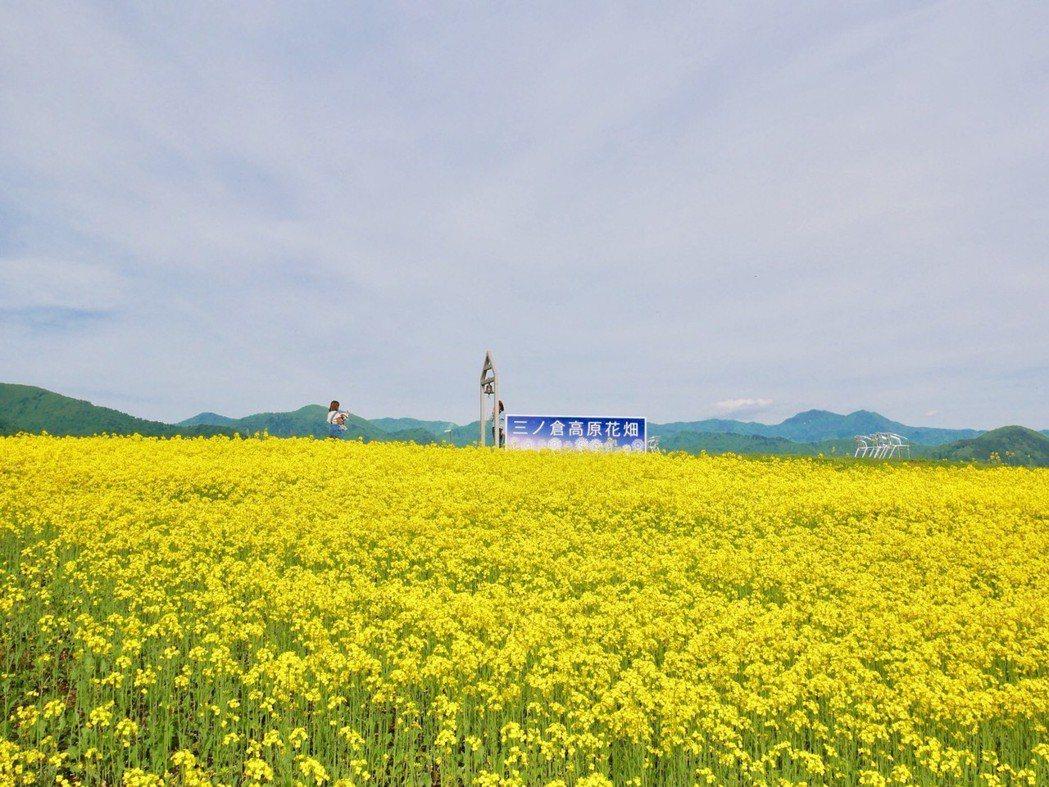 遠航表示,自去年開啟桃園-福島季節包機後,不只台灣旅客搭機至福島觀光,從福島出發...