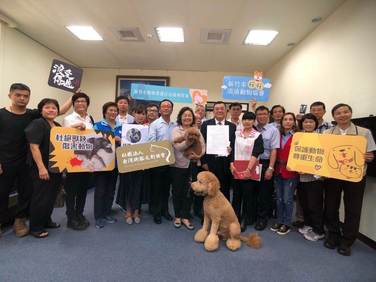 新竹市議會議長許修睿為守護毛小孩,提案推動新竹市動物保護自治條例草案,獲許多動保...