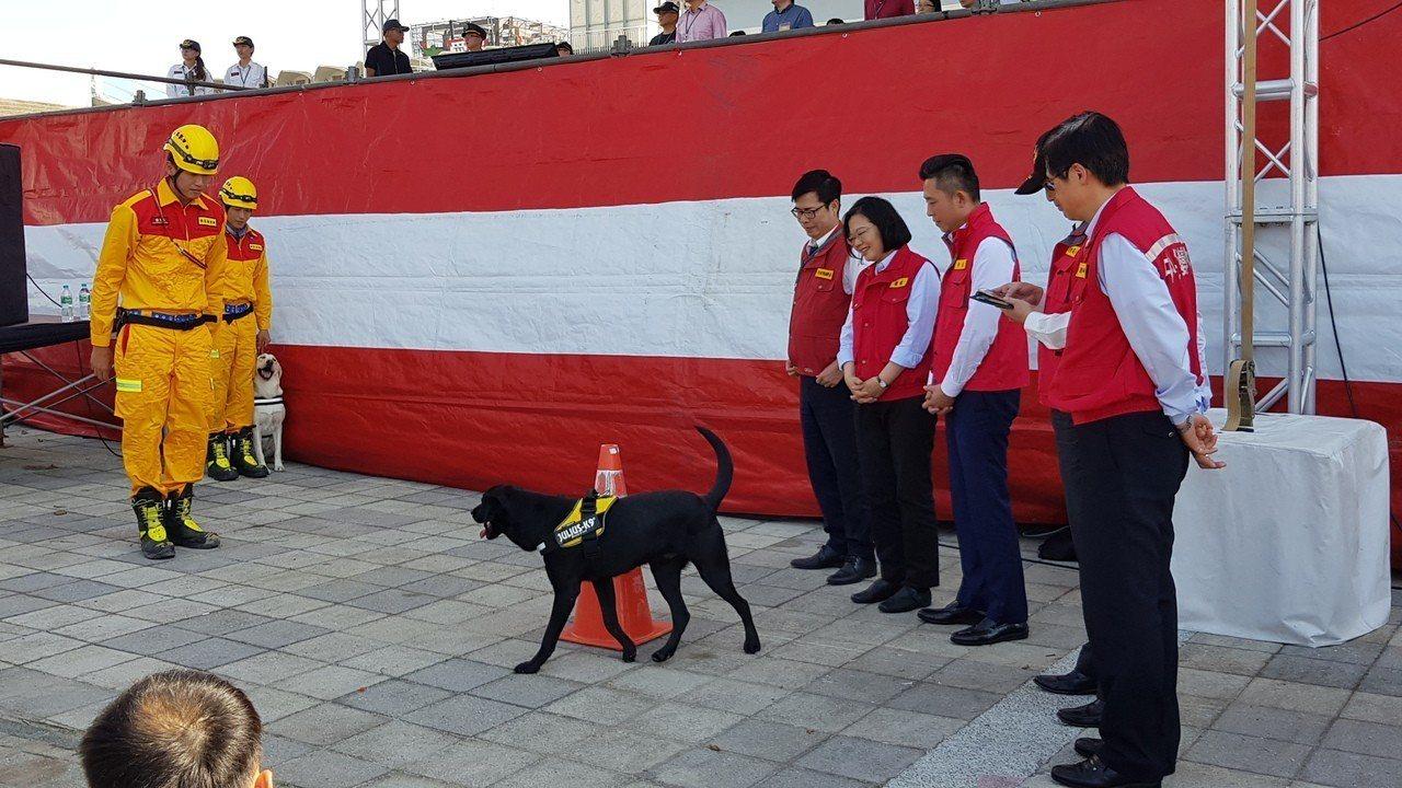 總統蔡英文與新竹市消防局兩隻搜救犬互動。記者黃瑞典/攝影