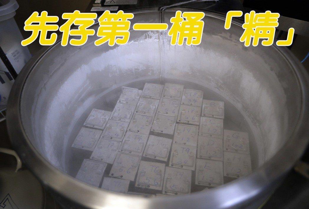 冷凍精子被儲存在攝氏零下198度的液態氮中。 (美聯社)