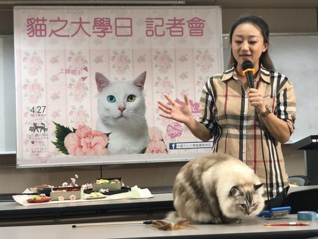 寵物行為老師謝佳蕙教導新手飼主如何觀察貓的行為。 圖/文化大學推廣部提供