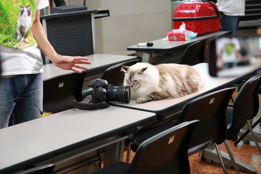 寵物攝影老師劉智豪說明如何20分鐘內替毛小孩拍出好照片。 圖/文化大學推廣部提供