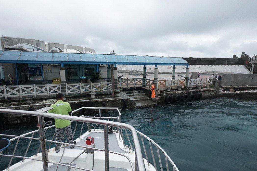 花蓮漁港賞鯨碼頭啟用17年,業者抱怨設施老舊、簡陋,遭遊客抱怨。記者王燕華/攝影