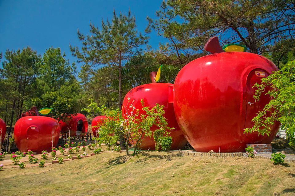 大型的蘋果屋可入住2大1小。圖/摘自福壽山農場粉絲團
