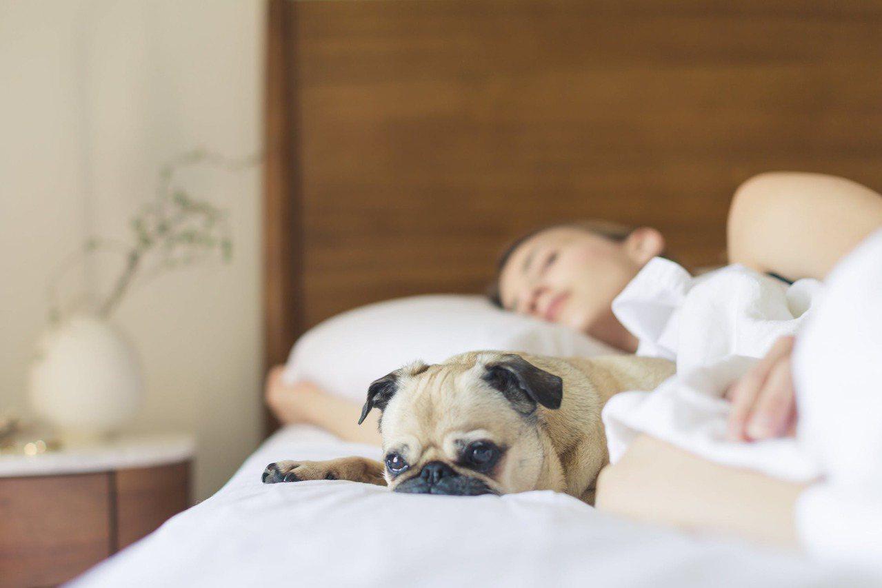 為了愛美帶著矯正器、假牙睡覺,要小心睡眠運動的吞嚥動作。圖/摘自 pexels