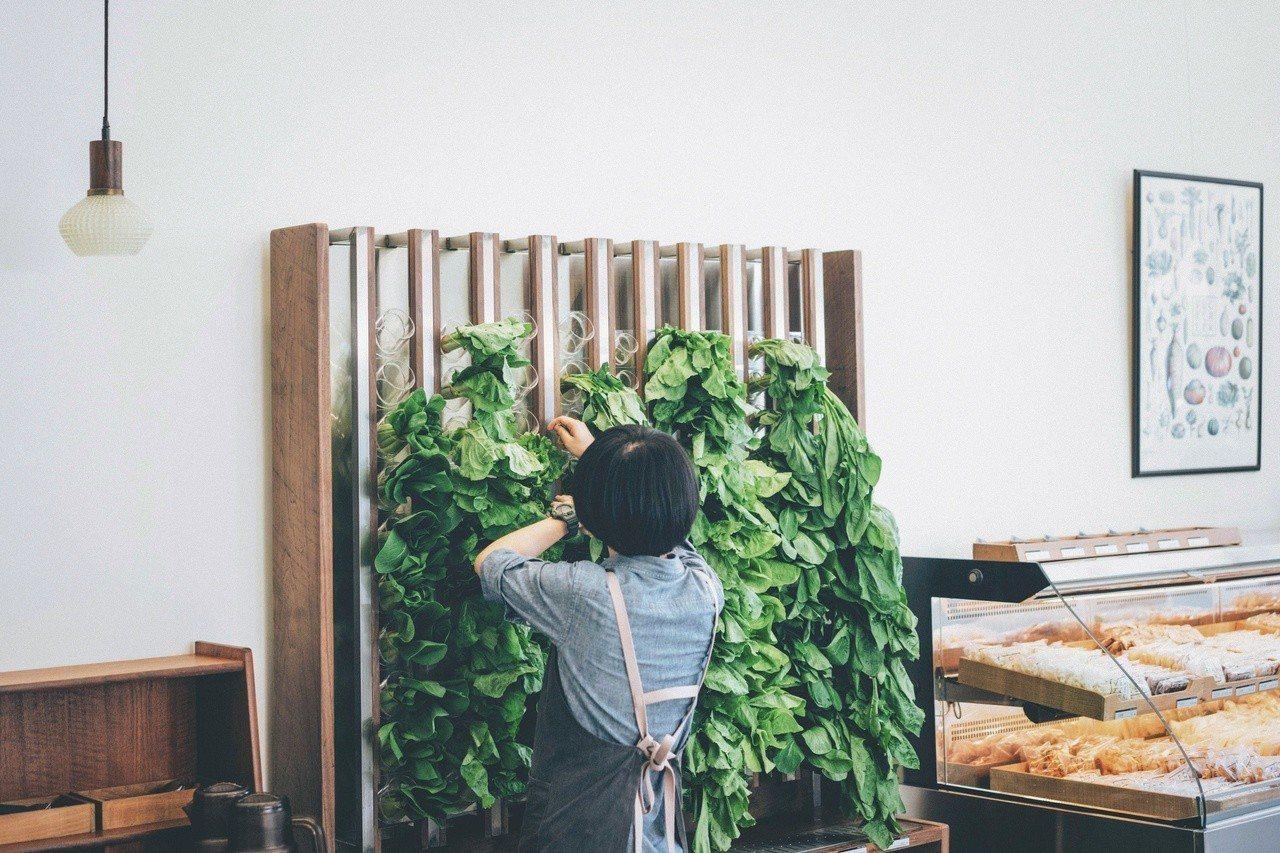 VEGE CREEK蔬河5月3日至5月12日於櫃上任選兩把蔬菜,第二把折10元、...