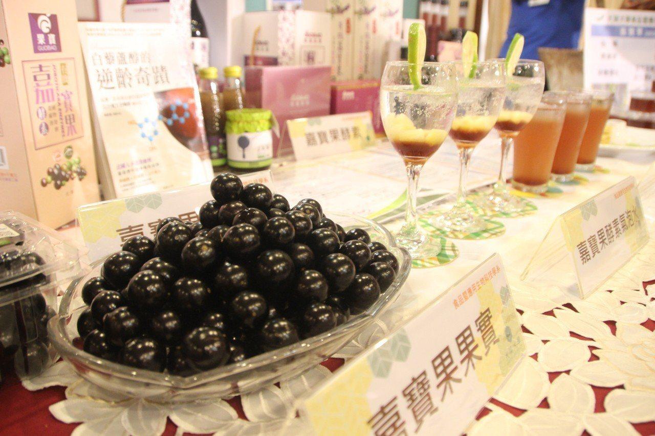 嘉寶果又稱「樹葡萄」鮮果保存不容易。記者林敬家/攝影