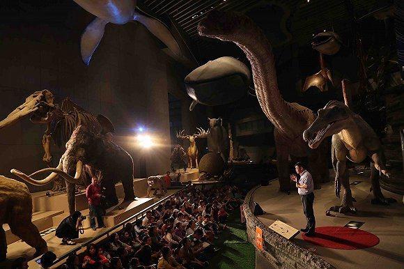 大陸各地博物館積極創新,讓參觀博物館變得更加有趣。圖為上海自然博物館2018年舉...