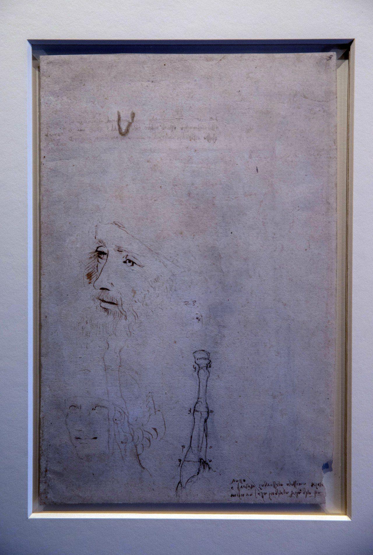 英國王室收藏的這幅肖像畫,最近被證實是義大利文藝復興時代藝術家達文西過世前不久的...