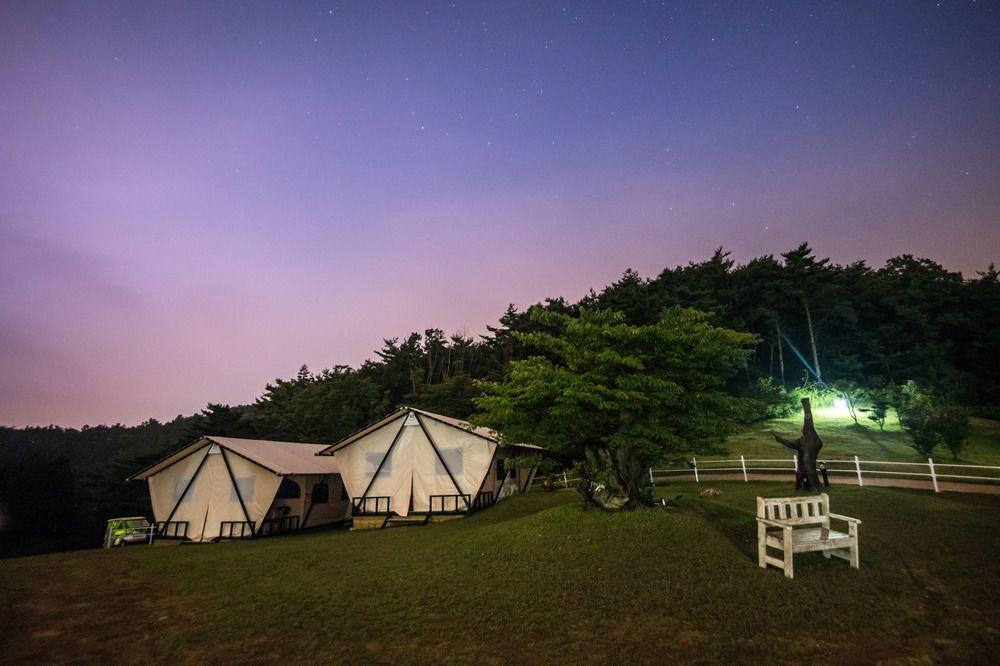 韓國光陽的努萊格戈爾酒店,可在花海中享受豪華露營。圖/Hotels.com提供