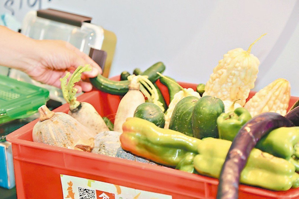這些是「格外品」的醜蔬果。 記者魏莨伊/攝影