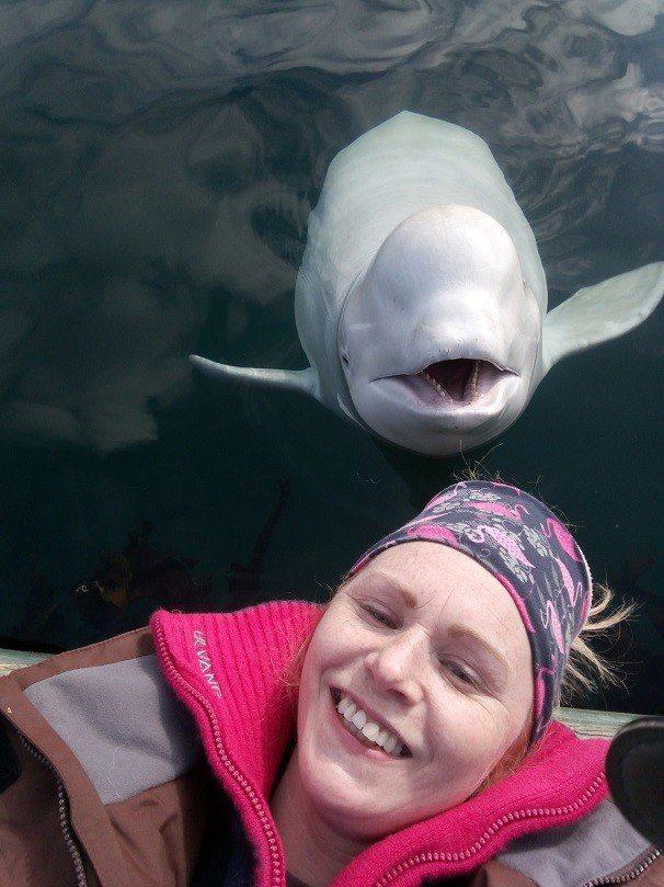 挪威居民薩瑟(Linn Saether)4月29日與出現在挪威北極海的友善白鯨自...