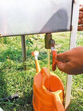 方便收集液肥的抽屜水龍頭。 圖╱朱慧芳