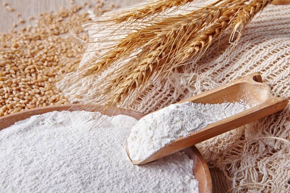 被同業視為「瘋子」的豐盟董事長郭信宏浸淫麵粉產業30多年,對他而言,這不僅是生意...