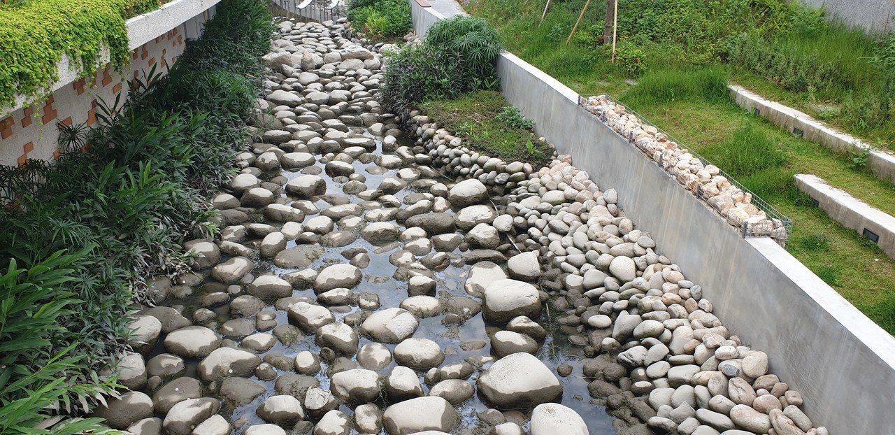 豐原葫蘆墩圳親水河岸,連續多天沒水 發生爛泥巴味道。記者游振昇/攝影