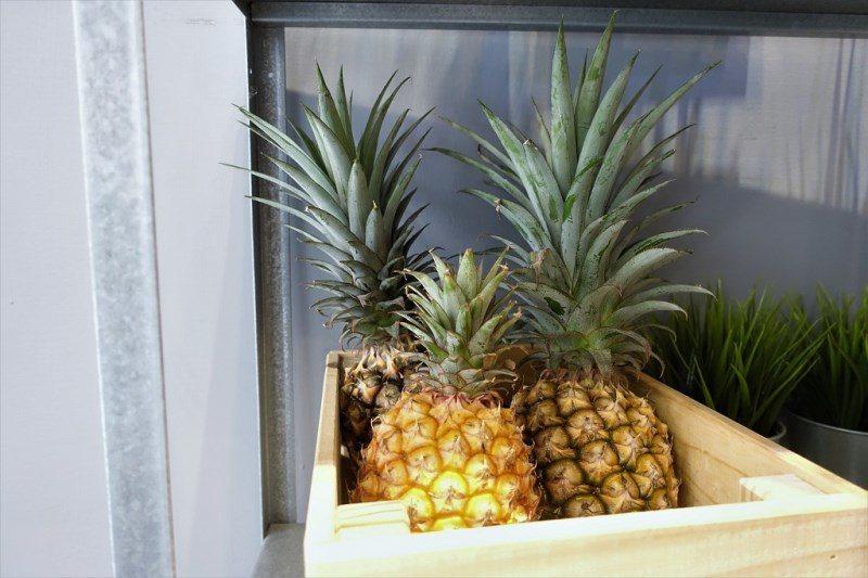 (圖/台灣旅行趣) ▲店裡可愛的擺設,新鮮水果也看得見喔。