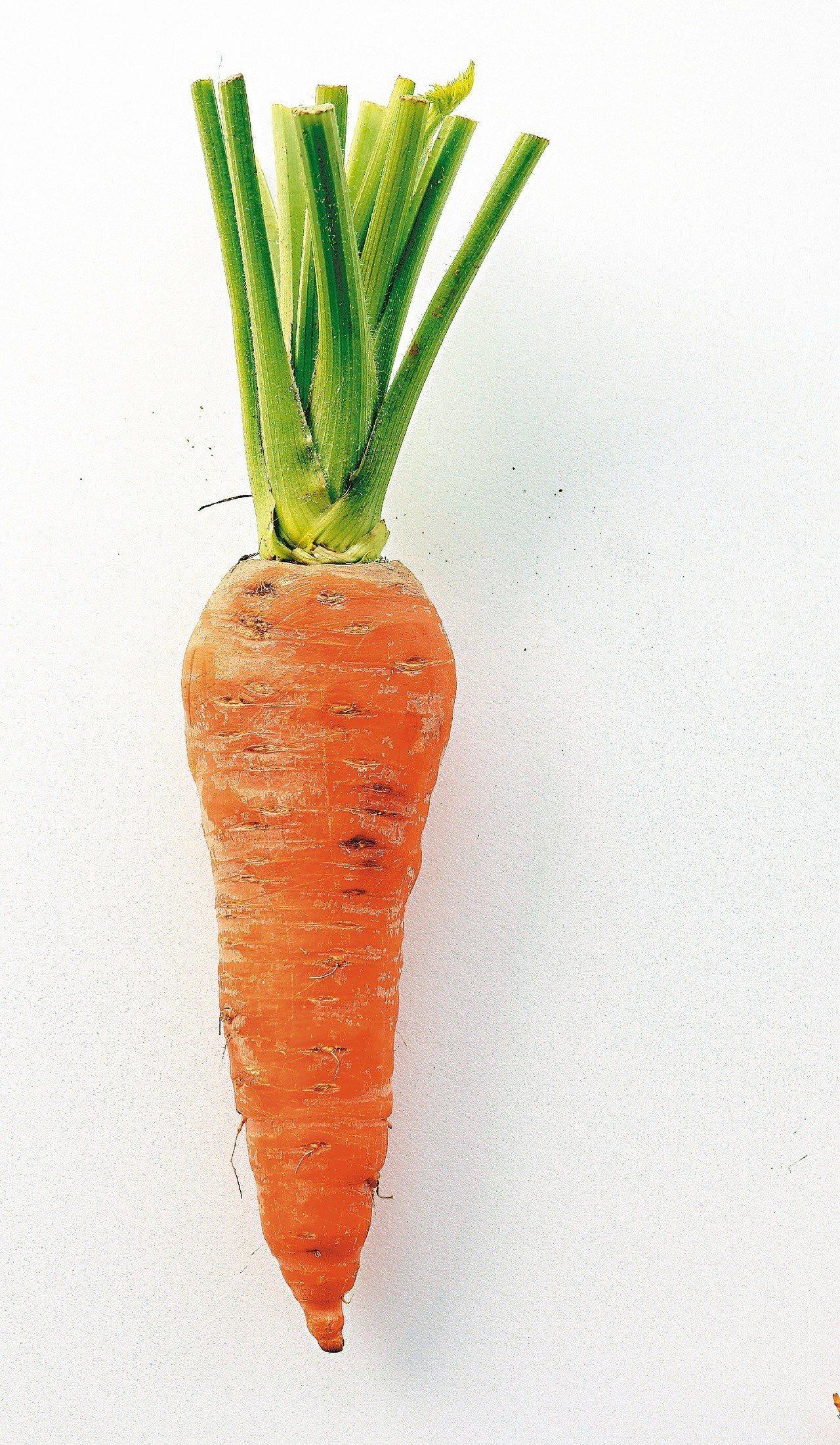 春夏養陽,養陽重在養心,紅色食材可入心,因此可多吃番茄、胡蘿蔔等紅色食物。本報資...
