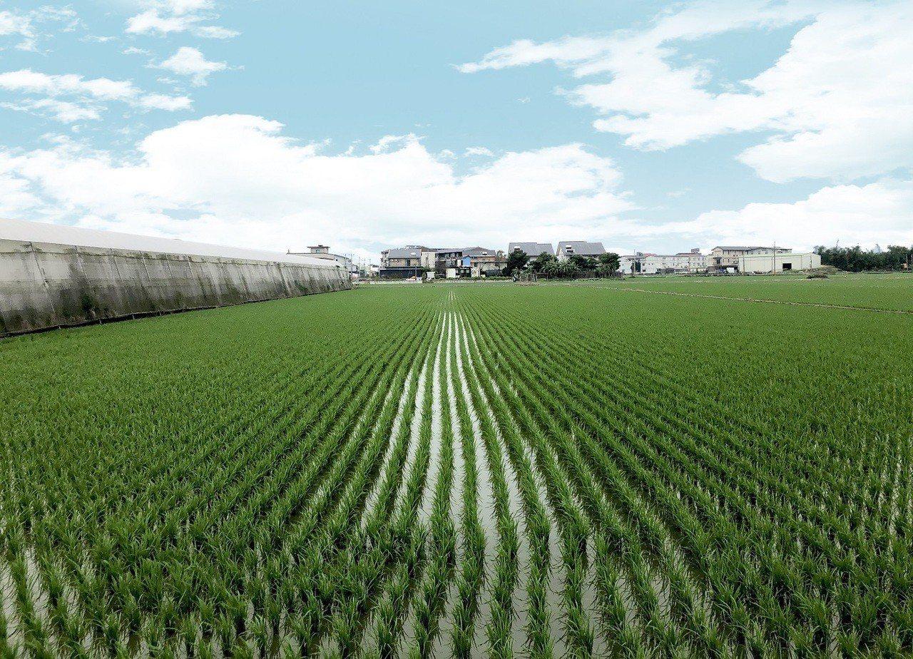 普華國際不動產公開標售宜蘭壯圍供興辦長照機構土地。圖/普華國際不動產提供