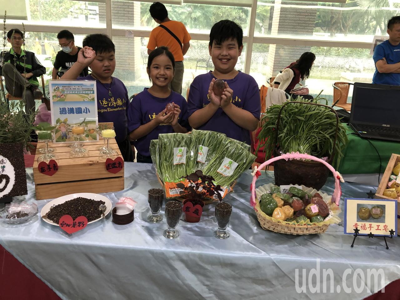 嘉義縣首次食農食育食安教育博覽會,18鄉鎮市18所種子學校,展示琳瑯滿目農產及加...