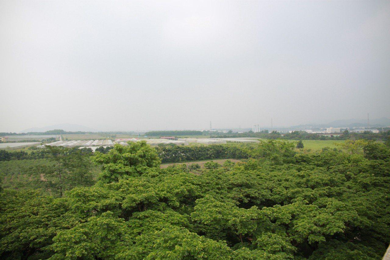 橋頭科學園區的計劃用地,位於高雄科技大學旁。記者鄭鴻達/攝影