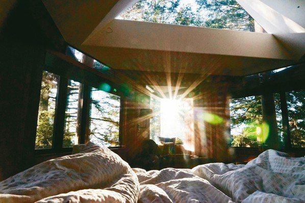 大量採用玻璃、天窗,清晨任由陽光、綠意灑落,動人至極。 圖/游慧君、陳志光