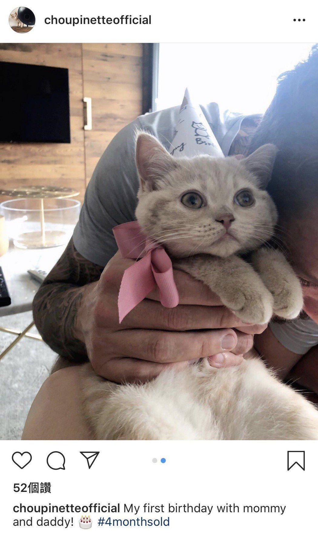 蔡健雅在IG分享男友和貓的合照。圖/摘自IG