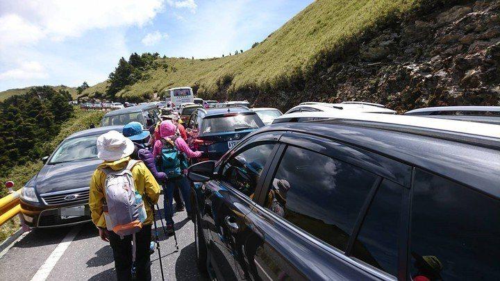 合歡山高山杜鵑大爆發,台14甲線公路從武嶺到石門山假日嚴重塞車。圖/警方提供