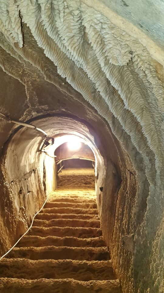 「鼓山洞」塵封已久,階梯都已鐘乳石化,經過導覽解說員引導探訪,除可感受軍事遺址的...