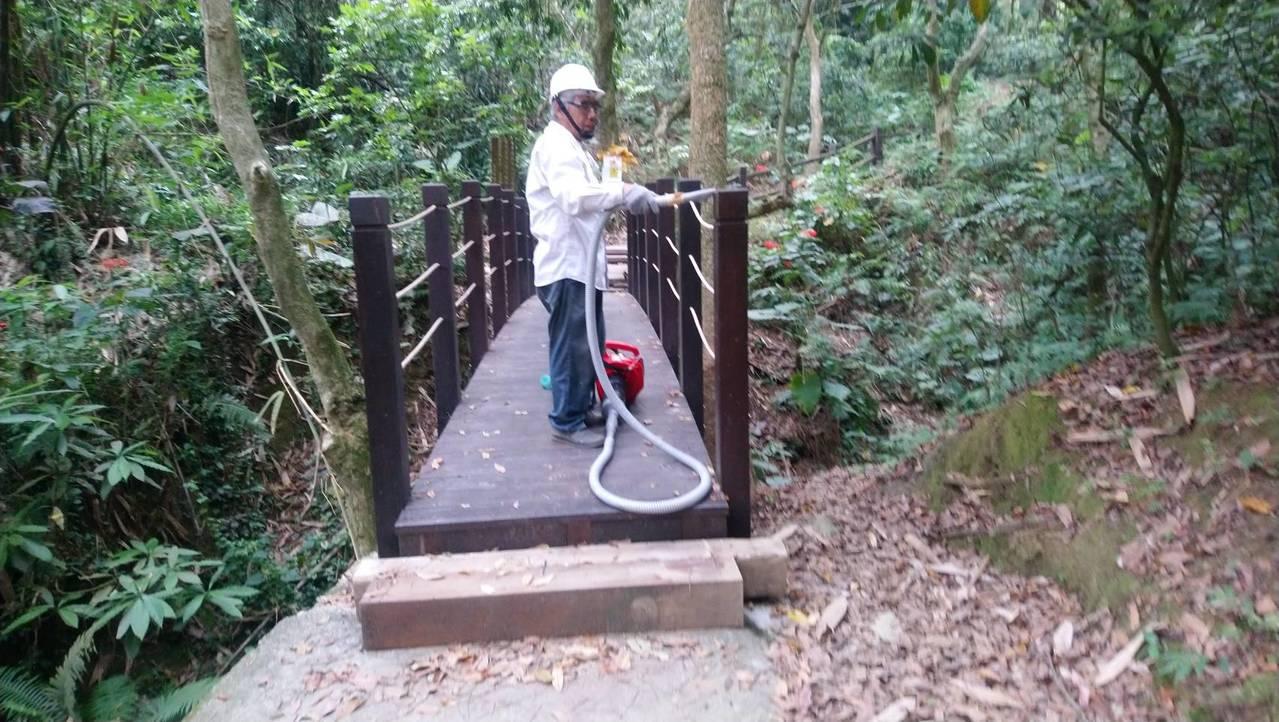 台中市政府利用人工和生物法清除荔枝椿象,大坑步道人潮多。圖/台中市政府提供