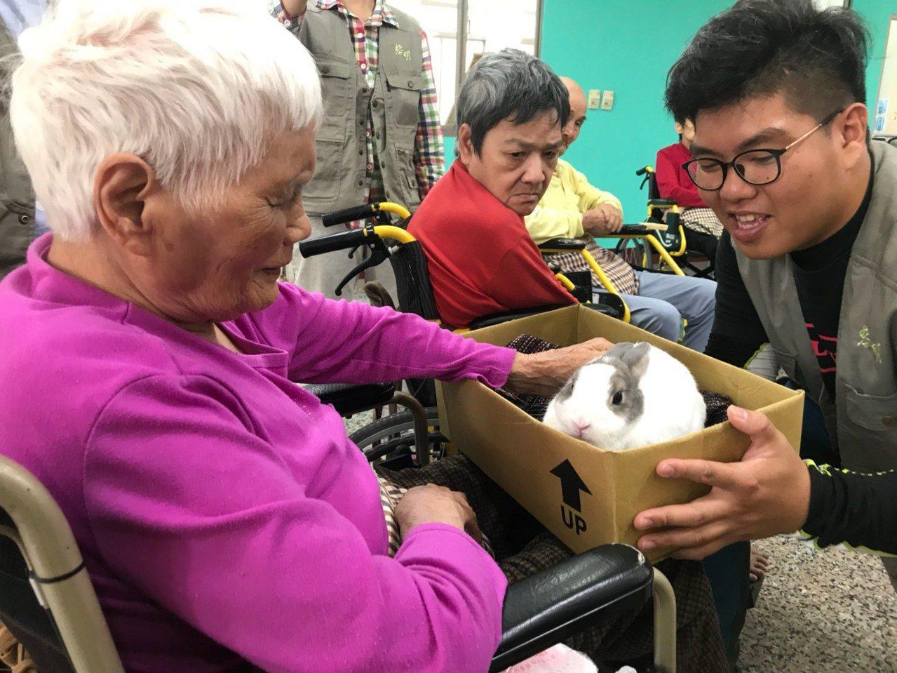 向陽園工作人員曾讓兔子坐在鋪上毛毯的箱子裡,降低不安感,讓長輩們撫摸,達到療癒功...