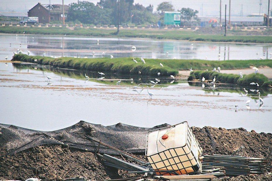 嘉義布袋濕地的太陽光電設備仍持續施工,保育人士憂心若擴大濕地種電,將造成更大生態衝擊。 圖/聯合報系資料照片