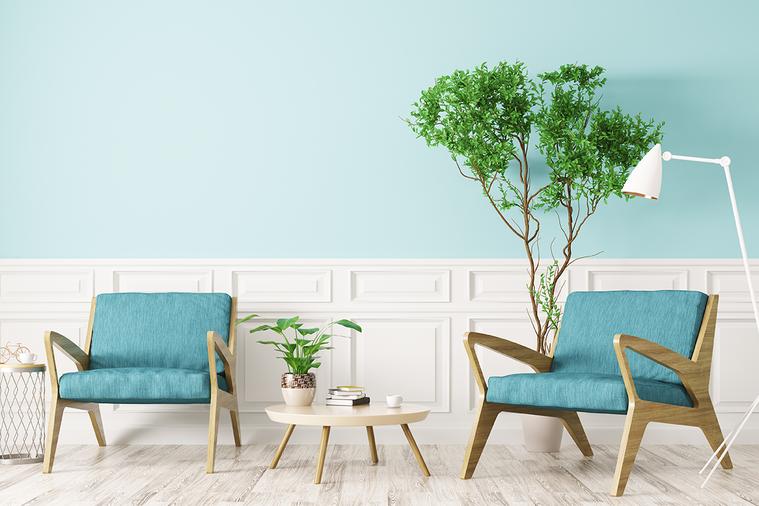 許多人會在家中擺放植物,除了綠化空間,一般人也認為能淨化空氣,只是室內植物真有改...