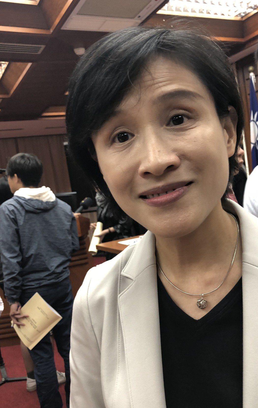 文化部長鄭麗君推動國家語言發展法。記者何定照/攝影
