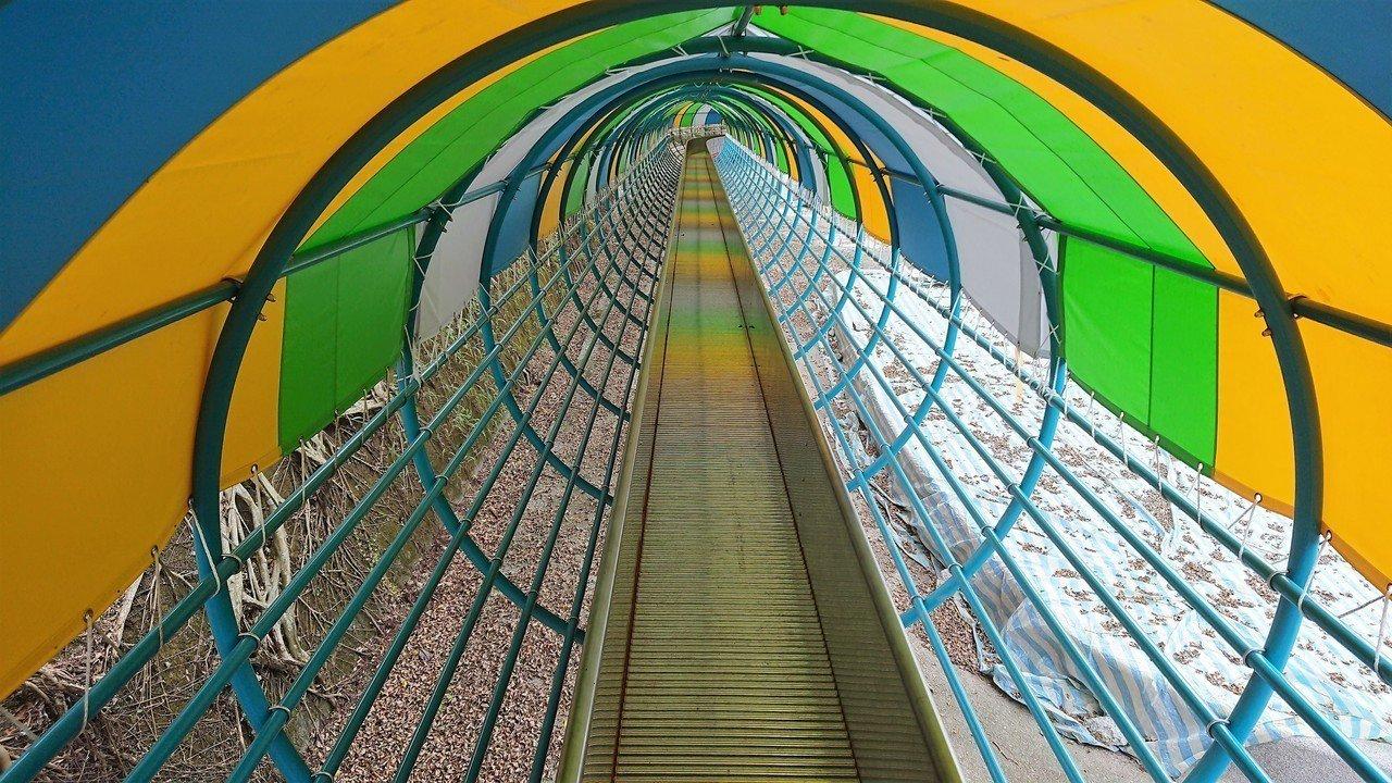 嘉義縣番路鄉半天岩,有一座全長80公尺滾輪溜滑梯,去年10月開放使用。報系資料照...