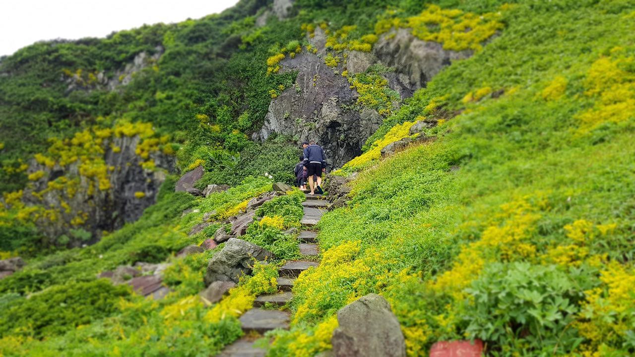 基隆嶼步道可攻頂360度俯看環島美景,兩側有豐富原生種植物。圖/市府科長蔡馥嚀提...