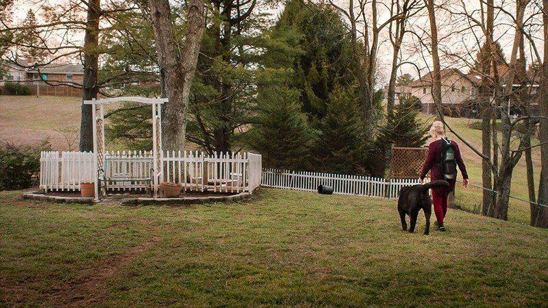 Caroline的另一隻愛犬Albert,也陪伴著Caroline面對疾病。 圖...