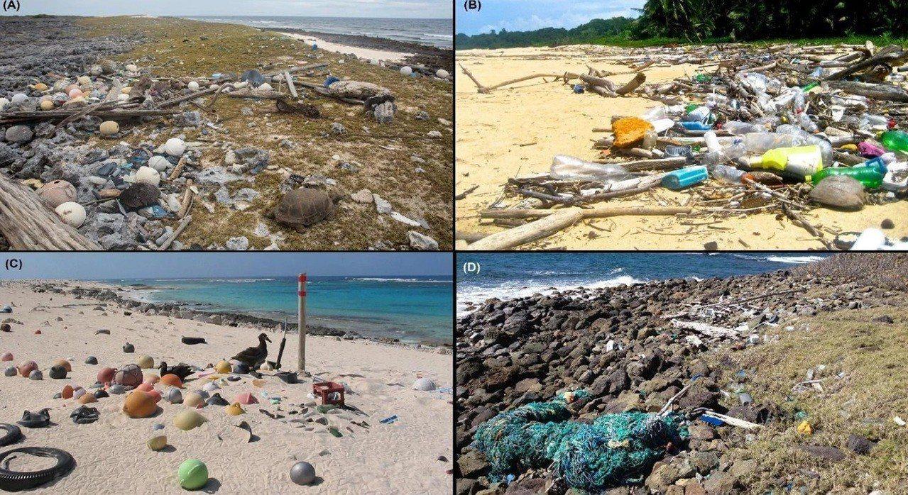 研究團隊在澳洲科科斯群島發現,在這裡的沙灘上佈滿從海裡飄來的垃圾,且被深埋進沙子...