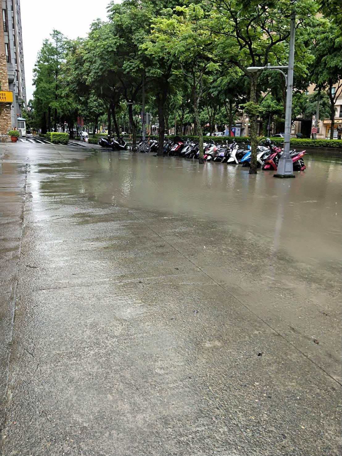 今天受到對流雲系影響,新北市也就降下大雨,全市時雨量前三名為鶯歌區49毫米、樹林...