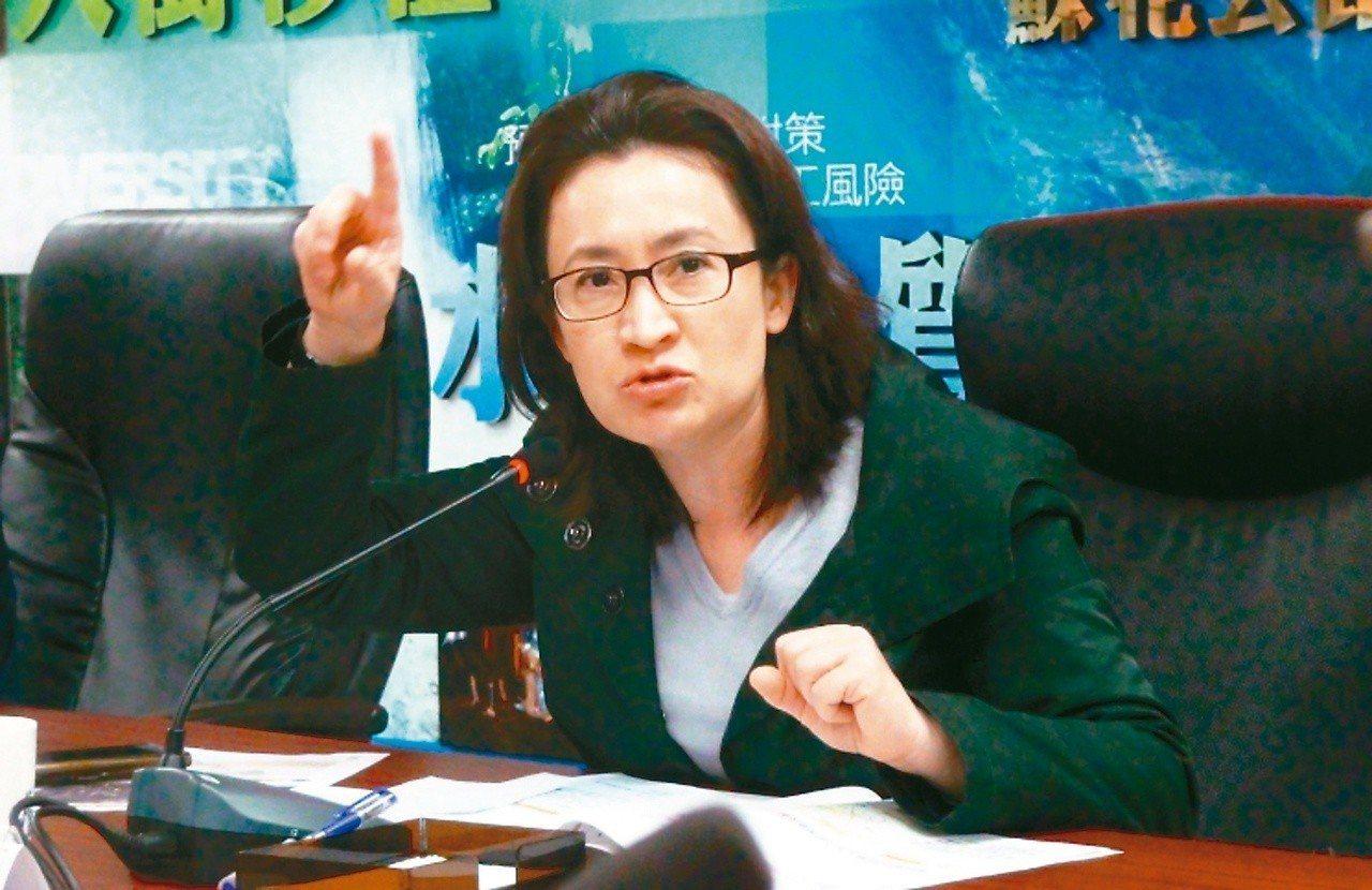明年花蓮立委選舉,民進黨立委蕭美琴連任意願不高。 圖/聯合報系資料照片