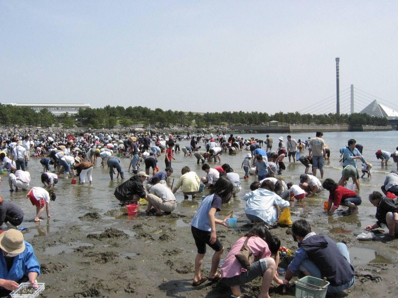 「潮干狩り」是日本常見的家庭活動。圖擷自横浜市緑の協会