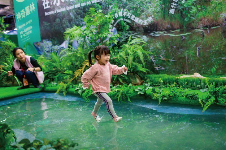 【神奇叢林】叢林沼澤中滋養著各種動植物,其中雙冠蜥能用輕功般的步伐橫越水面,...