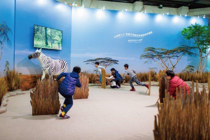 【奇蹟草原】在一望無際的草原,化身為捕食者獅子,靠著團隊合作並耐心等待獵捕時...