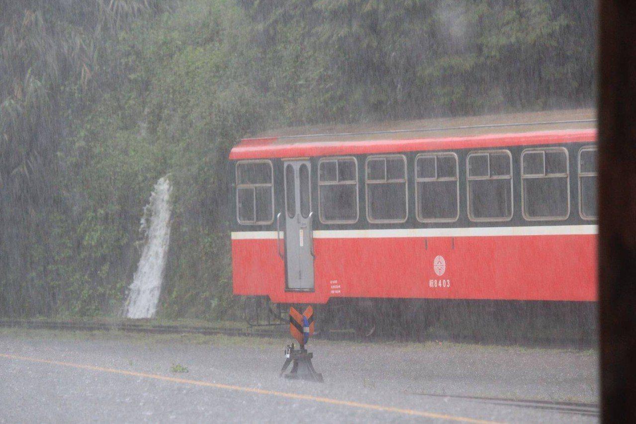 阿里山大雨不停,今日下午5點休園。記者謝恩得/翻攝