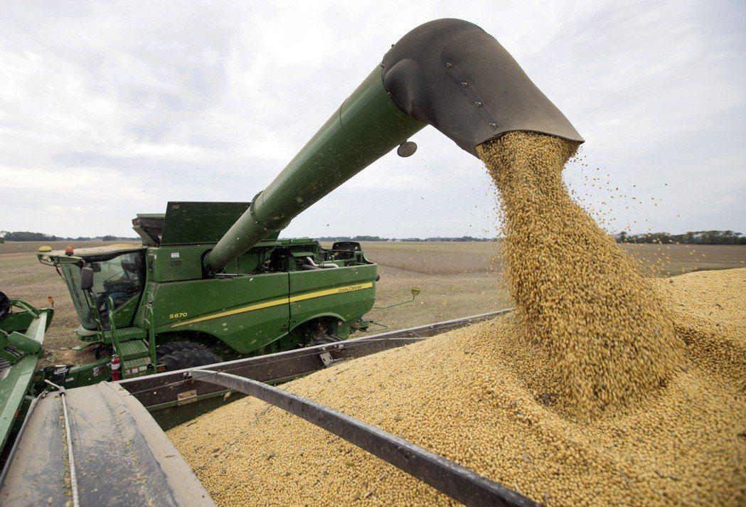 美國黃豆可能永遠流失中國市占。美聯社。