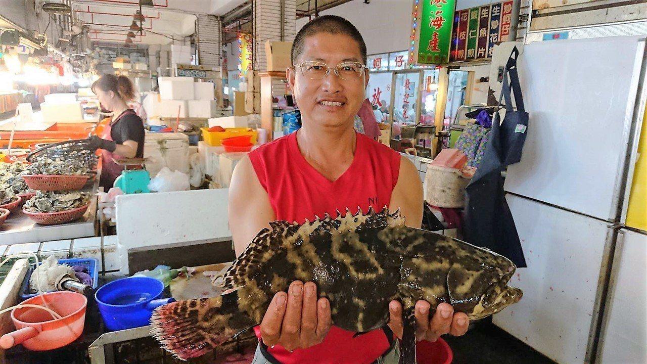 嘉義布袋鎮觀光漁市場的「龍虎石斑」,產地價最便宜。記者卜敏正/攝影